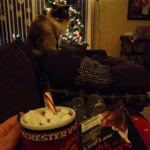 Day 15: Curling up with a peppermint cocoa and Christmas novel.